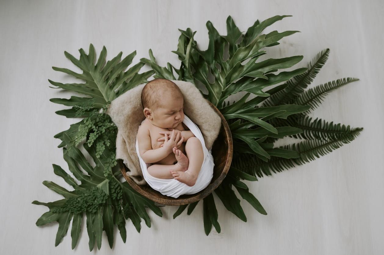 Newborn photography Ballina Alstonville